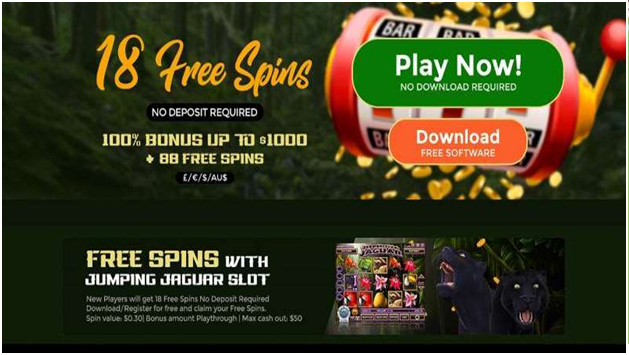 Free spins doesn't allow you to win bug